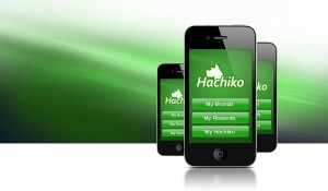 Hachico iOS Application Design