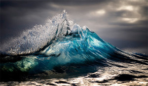 Ray Collins Photo